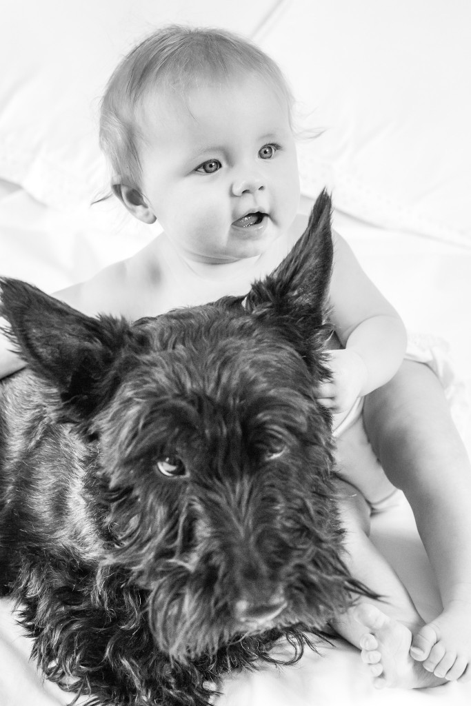 Black and white photo of baby holding her Scottish Terrier on a bed at Kings Langley taken by Hertfordshire family photographer Natalie Chiverton Photography