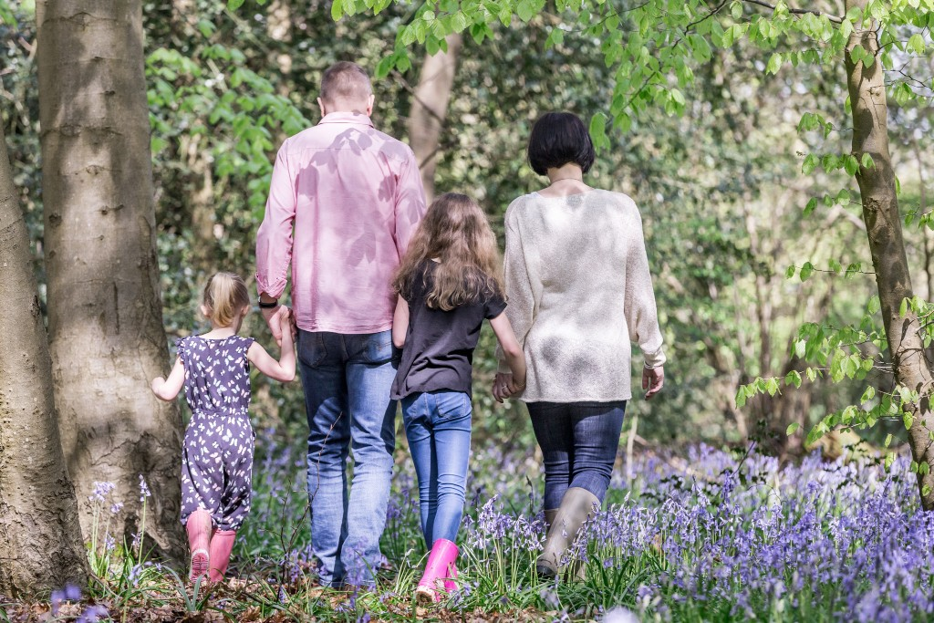 Photo of a family taken from behind while they are strolling through the woods with their two daughters at Whippendell Woods taken by Hertfordshire family photographer Natalie Chiverton Photography