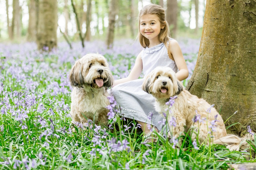 Cute little girl wearing a linen dress holding her two dogs and sitting next to a tree in a field of bluebell shoots at Whippendell Woods taken by Hertfordshire family photographer Natalie Chiverton Photography