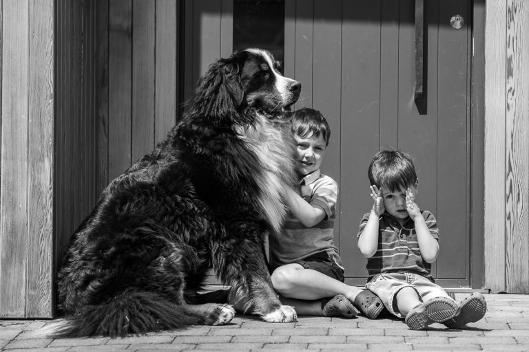 Children and their dog black and white